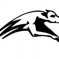 Greyhounds U13 – Spielort verlegt