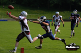 Greyhounds Seniors…Showdown am Gelben Sprung
