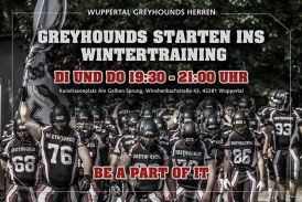 Greyhounds starten ins Training