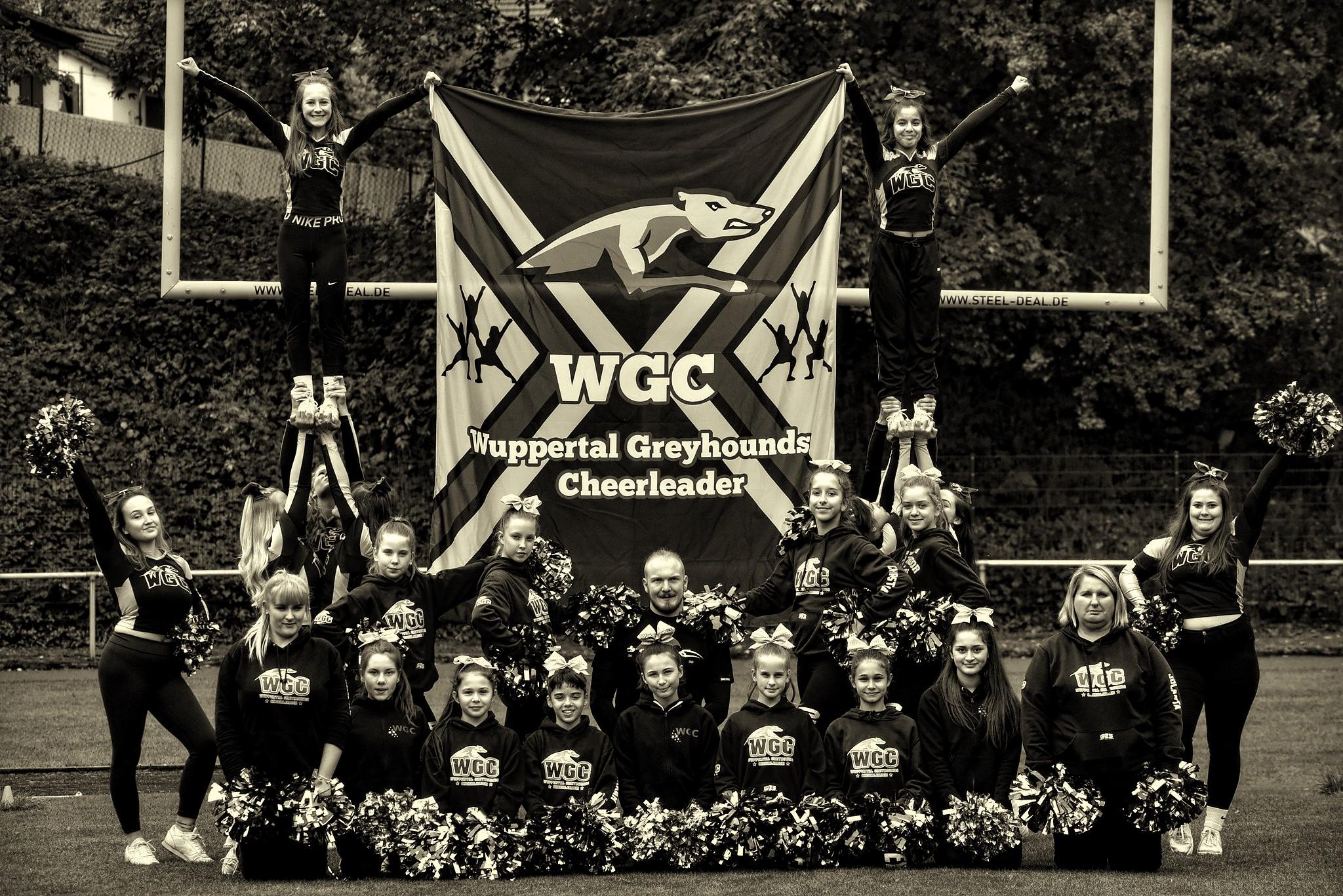 Greyhounds-Cheerleader